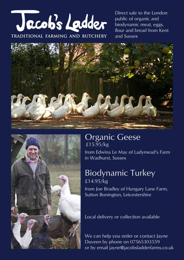 geese_poster